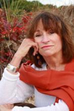 Anne LeClaire The Halo Effect Titcomb's Bookshop