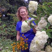 C.L.Fornari Sand and Soil Titcomb's Bookshop June 13 at 6:30 PM Cape Cod Gardening Book